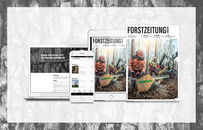 Forstzeitung Kombi_print